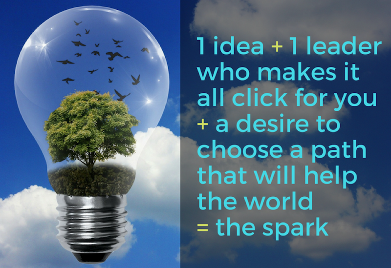 1 idea + 1 Leader + a desire to choose a path that will help the world