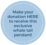 Make your donation here to receive this exclusive whale pendant