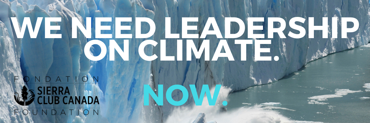 We need leadership on climate. Now.