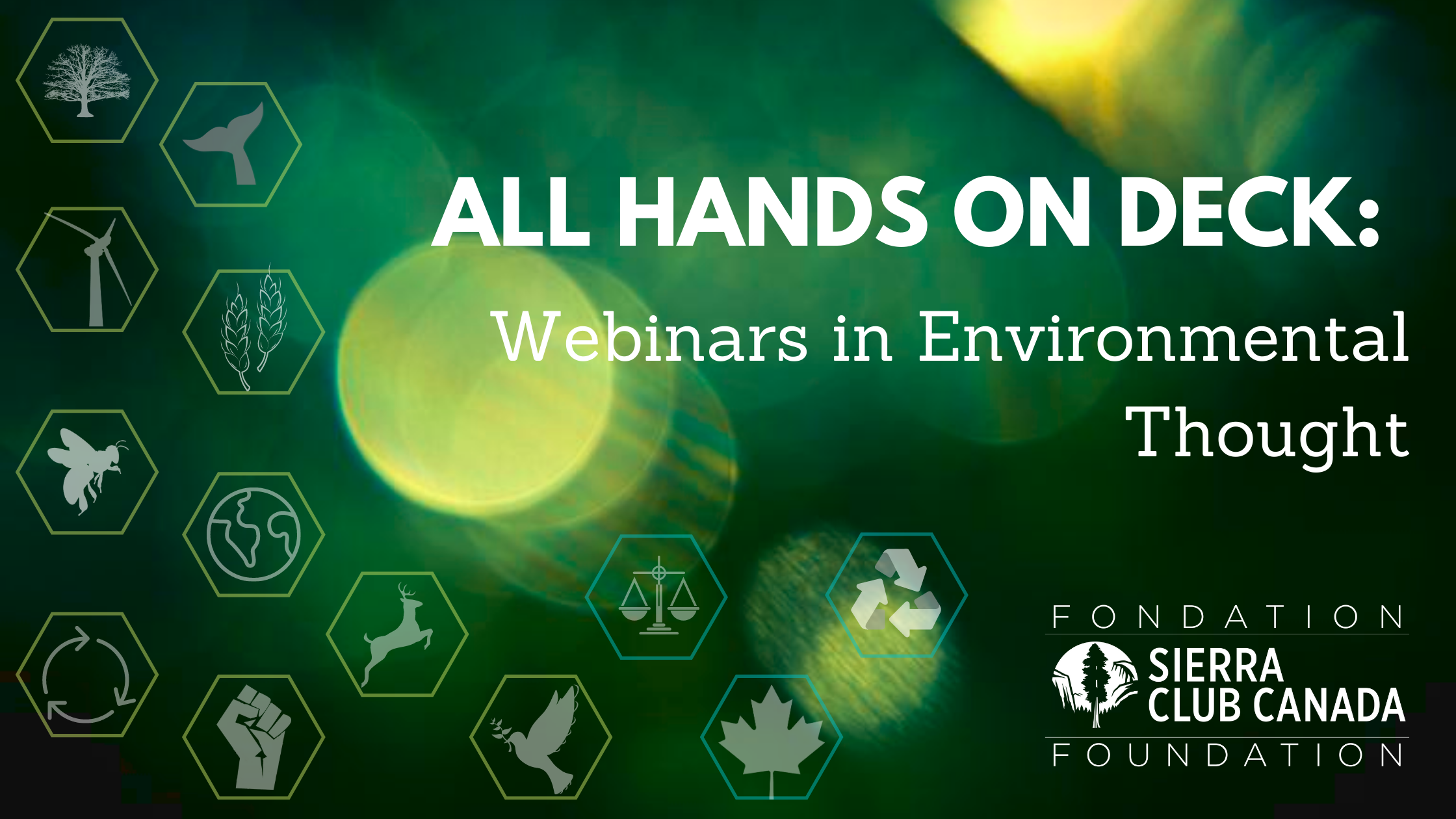 All hands on deck: Webinars in Environmental Thought