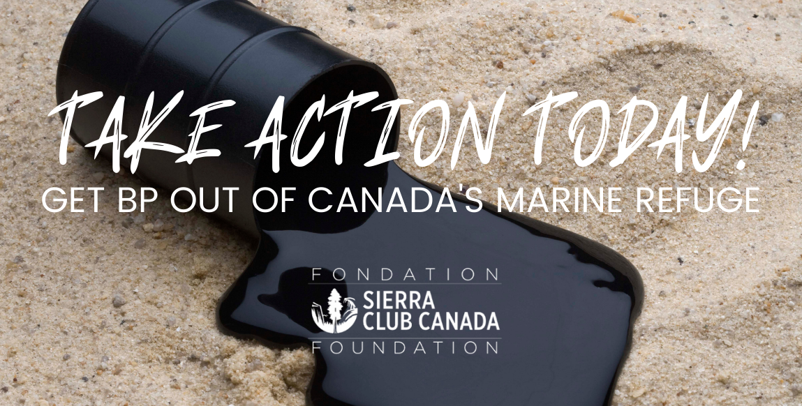 Take Action - Get BP Out of Canada's Marine Refuge