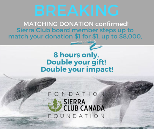 Matching donation confirmed.