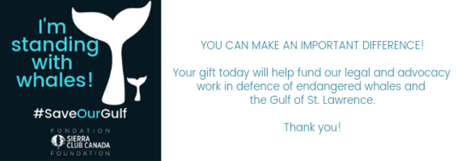 You make a differnece. Pleased  donate to support our work.