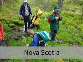 Nova Scotia Wild Child