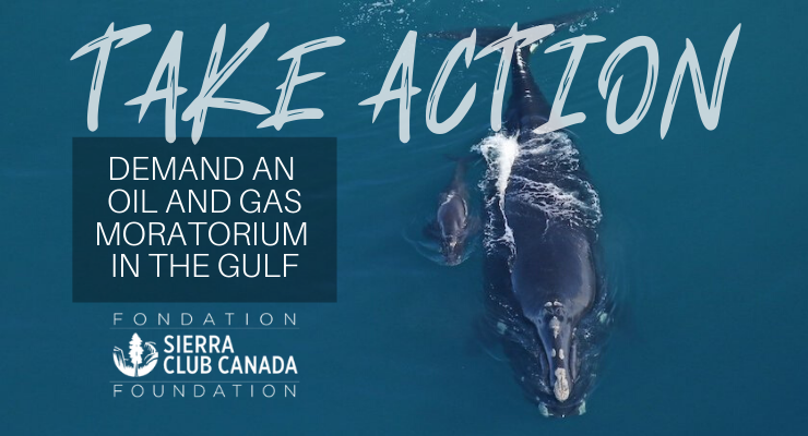 "Say ""NO"" to oil and gas exploration in the Gulf of St. Lawrence."