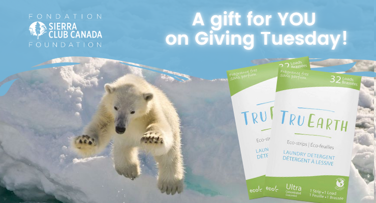 A special gift of Tru Earth Laundry Eco-strips just for you.