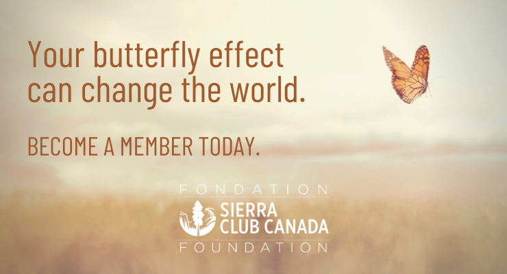 Become a Member. Your butterfly effect  can change the world