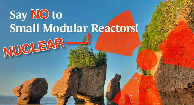 Say NO to More Nuclear Reactors