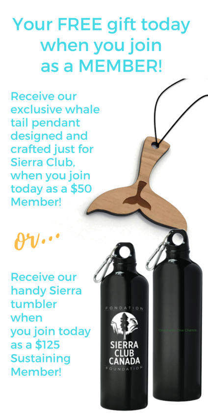 Join us today and receive a special gift in celebration of your commitment to the environment.
