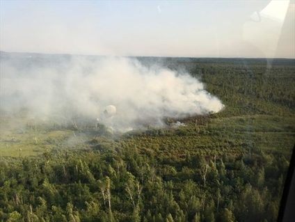 Aerial view of smoke from Wainfleet Bog fire in 2016