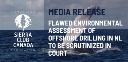 Flawed Environmental Assessment of Offshore Drilling in NL to be Scrutinized in Court