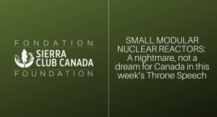Media Release Small modular nuclear reactors: A nightmare, not a dream for Canada in this week's Throne Speech