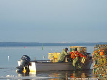Fishermen loading lobster trap