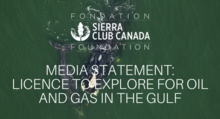 Media Statement: licence to explore for oil and gas in the gulf
