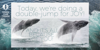 Today, we're doing a double-jump for joy and it's all because of YOU!